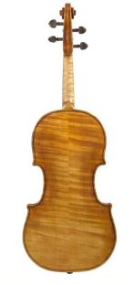 Viola 2009 after Gasparo da Salo Brescia c1580 Back view